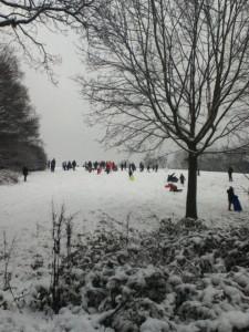 Snow&Fun