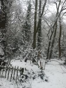 Snow&Path2
